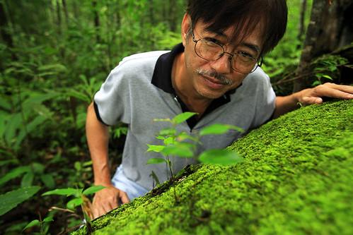 Tue, 11/20/2007 - 12:25 - Huay Kha Khaeng Wildlife Sanctuary/ Thailand. Image from the 50 ha permanent observaton plot of the CTFS.