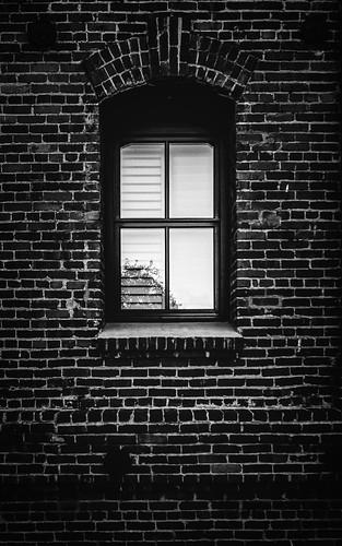 _E8A1115-Edit-2 | by 5280_Pics