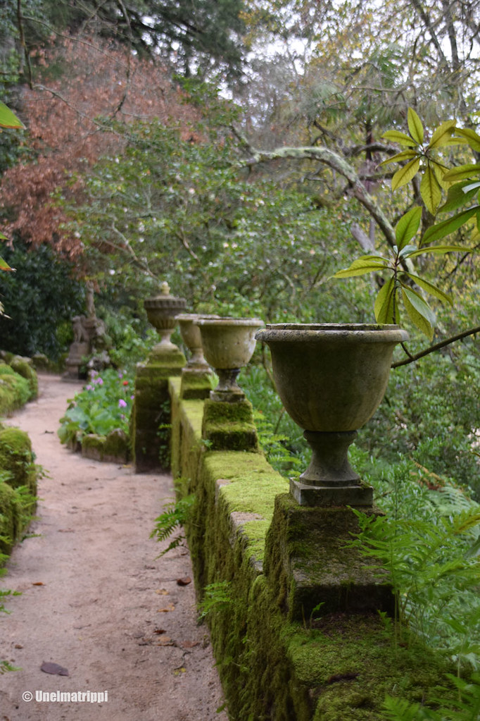 Sammalen peittämiä ruukkuja Quinta da Regaleirassa Sintrassa