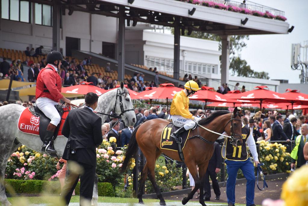 Spring racing Carnival in Melbourne