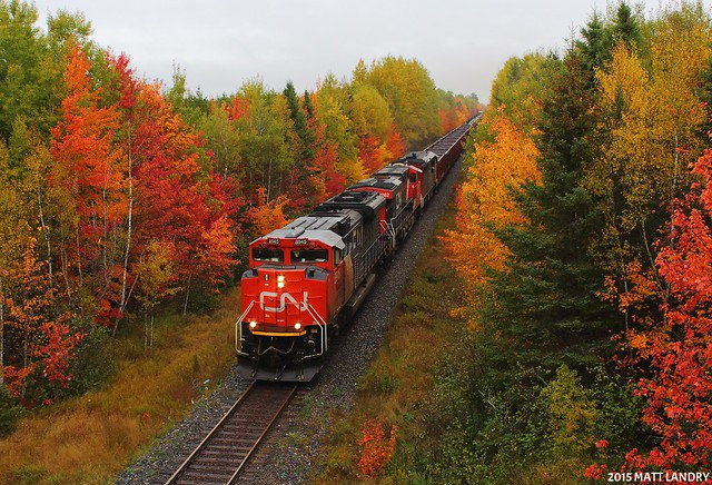 CN 8945 West, Surrounded By Fall