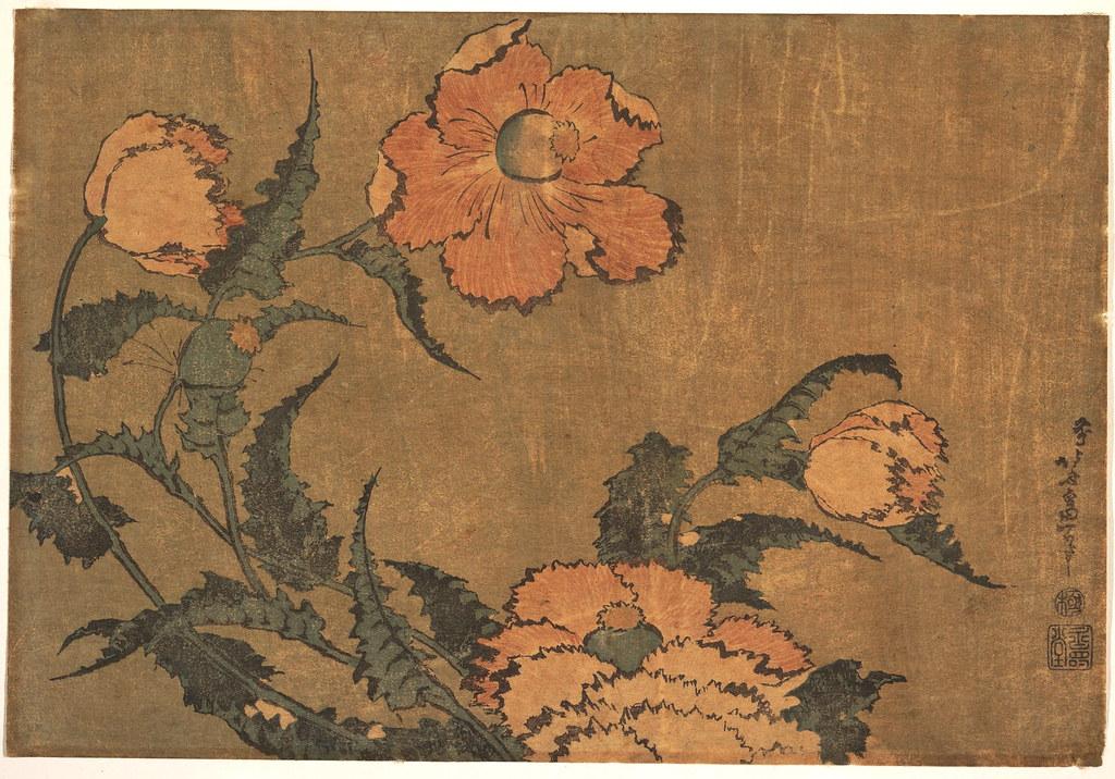 Poppies in the Wind_Katsushika Hokusai