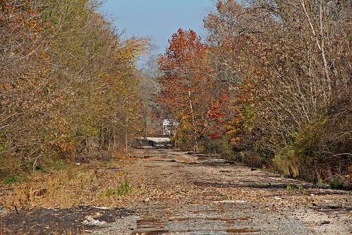 abandonedrailroads akronohio railroadsofakronohio trees baltimoreohiorailroad csx csxinakronohio railroadties akronjunction