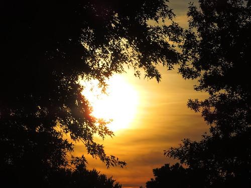 sunset ohio summer sky silhouette yellow contrast outdoors nikon outdoor vivid serene canalfulton nikonphotography