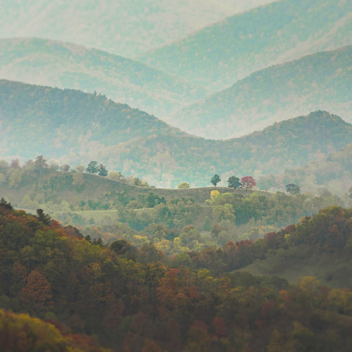 alleghenies allegheny appalachia germanyvalley westvirginia autumn country countryside curves day forest front hills hillside layers light mountains nature outdoors slopes square trees riverton unitedstates us