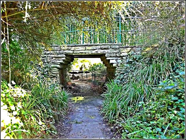 Bridge in the Park ..