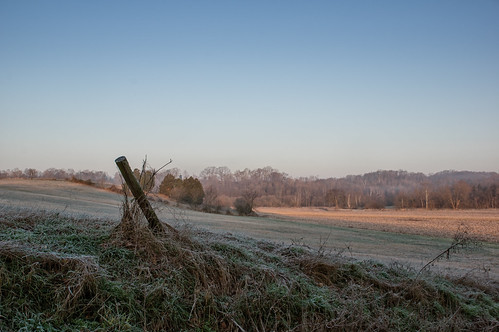Frosty Field   by Vincent1825