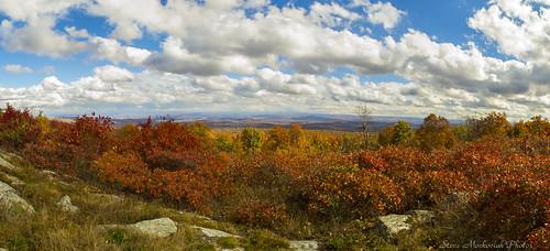 smack53 autumn autumncolors fall fallcolors fallseason foliage panorama scenic scenery highpointstatepark newjersey nikond3100 nikon d3100