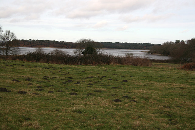Brand's Bay, Poole Harbour