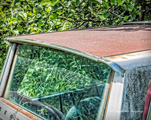 auto old abandoned window glass car minnesota automobile unitedstates vehicle alborn augphotoimagery