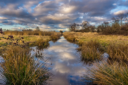 sky water field clouds reflections landscape ditch brush deltabc