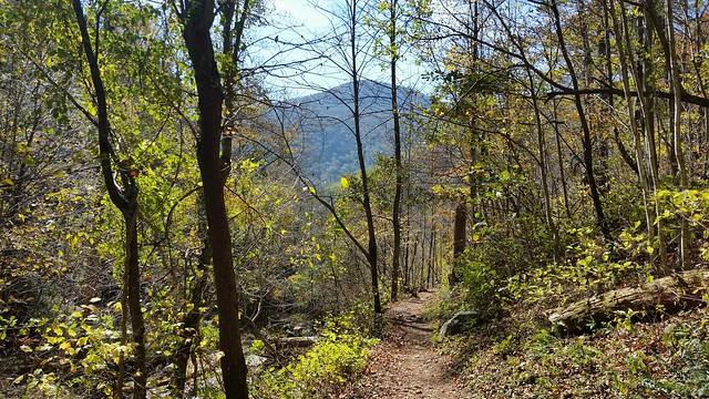Doyle River Trail Shenandoah National Park