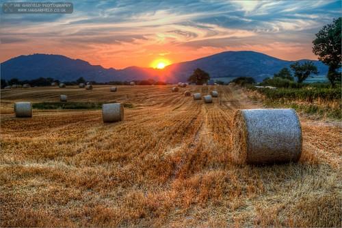 sunset summer sky cloud sun nature field wales clouds canon ian photography high dynamic farm farming straw fields hay bales middletown range garfield hdr cirrus welshpool photomatix a458 cardeston 5d3