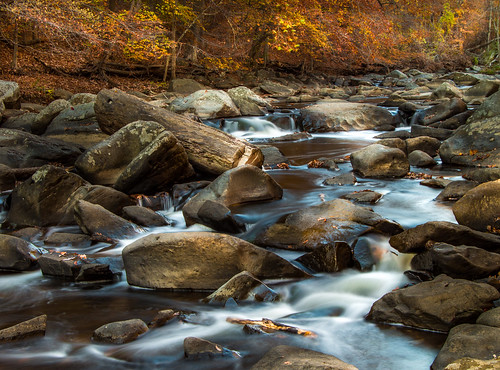 longexposure autumn trees water creek washingtondc rocks rapids serene