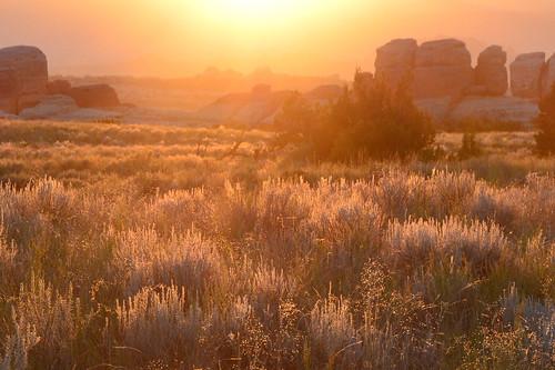 sunset canyonlands nationalpark cheslerpark backpacking