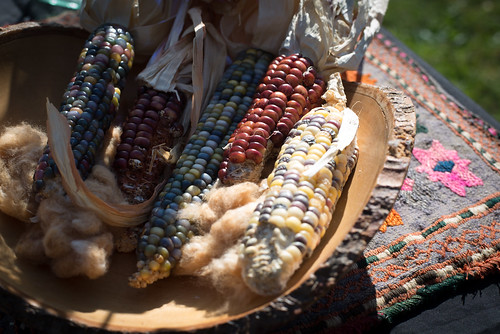 4th Annual Three Part Harmony Farm Fall Festival | by threepartharmony