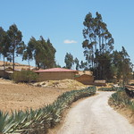 Di, 15.09.15 - 12:35 - Jesus - Cachachi Road