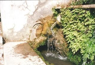 Tivoli Garden water feature