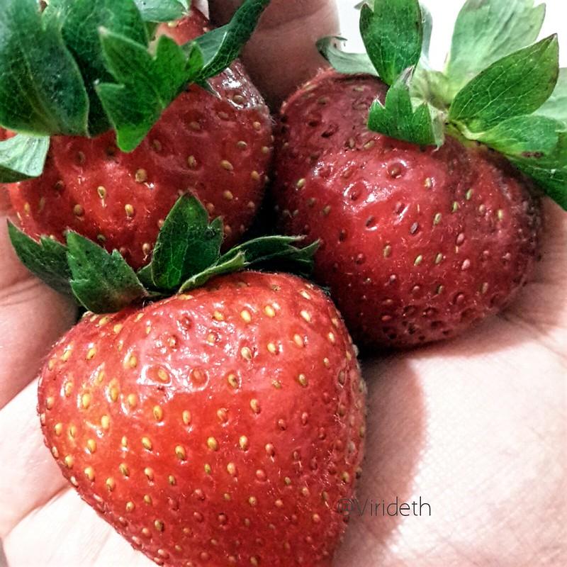 Pequeños corazones ☺  Little Hearts ❤ Me encantan las fresas  I  Strawberries