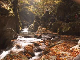 Nishizawa ravine   by elminium