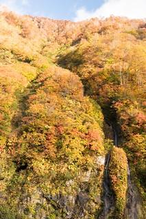 秋があり2 | by hiroching