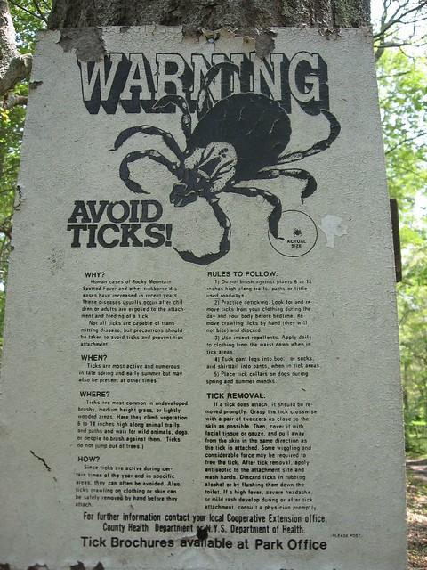 Cuidado: garrapatas
