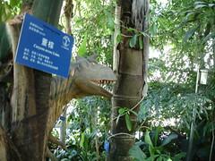 Jardin botanique de Pékin