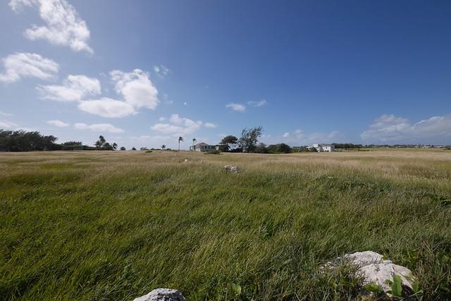日, 2015-12-06 09:06 - 宿の前の牧草地