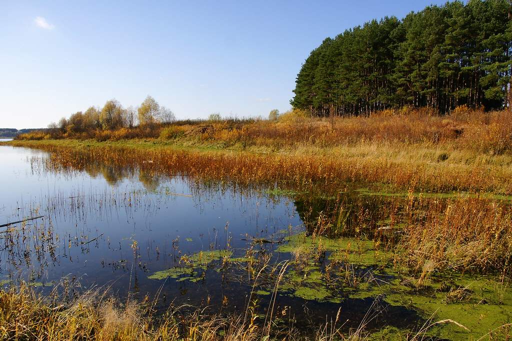 Beatiful scenery of Mozhaysk Reservoir, Russia