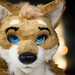 Further Confusion 2017 - Day 5