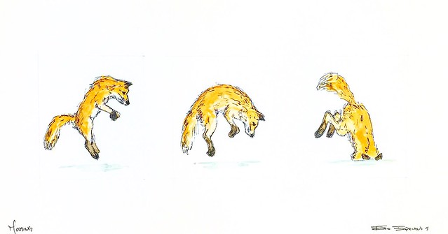 We couldn't be more happy with this Red Fox Watercolor Illustration from Erik from Field-Hands.com.