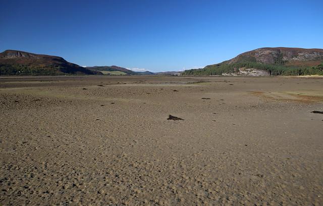 The northern shore of Loch Fleet