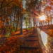 Autumn rain by Photography Herák Denis