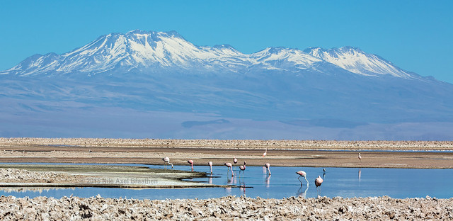 J77A8412 -- A view near San Pedro de Atacama, in Chile.