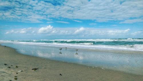 ocean sea seascape beach seaside florida beachfront beachscape spacecoast floridanabeach
