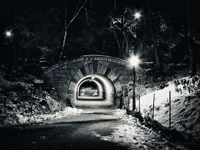 Inscope Arch at Central Park
