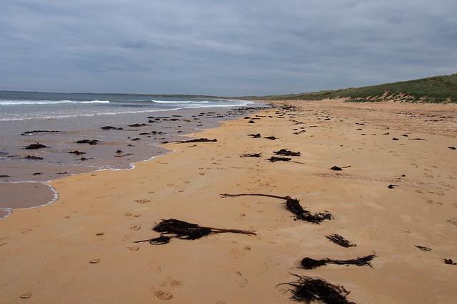 Fraserburgh Bay