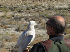 Dad and SiFinn, Soldier Meadows Road Between Gerlach and Soldier Meadows, Nevada