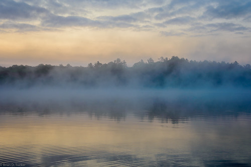 morning light mist lake water misty fog sunrise morninglight foggy august foggymorning chandos 2015 d610 mistymorning lakechandos briandtucker august2015