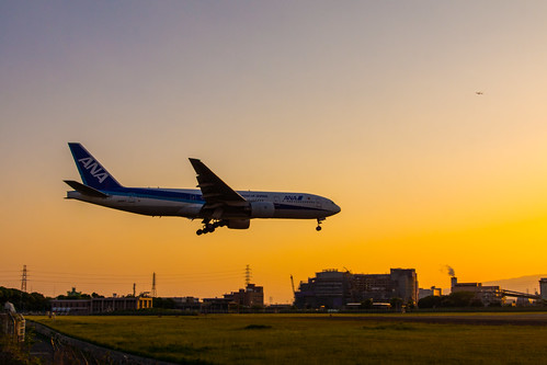 sunset japan airplane ana aircraft aviation 大阪 日本 osaka boeing 夕焼け 飛行機 itm 空港 b777 allnipponairways 全日空 大阪国際空港 伊丹空港 osakainternationalairport