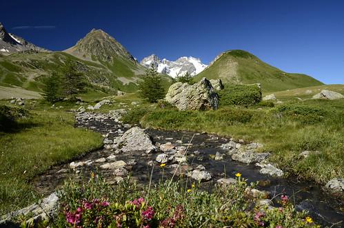 source de la guisana hautesalpes hautes alpes provencealpescôte dazur col du lautaret briançon paca parcnationaldesécrins laura carrier