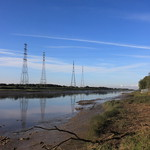 Debris, River Ribble