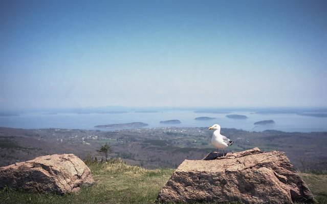 Bar Harbor from Mt. Cadillac