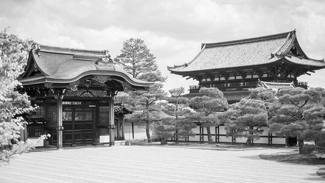 LR ninnaji temple kyoto-4.jpg
