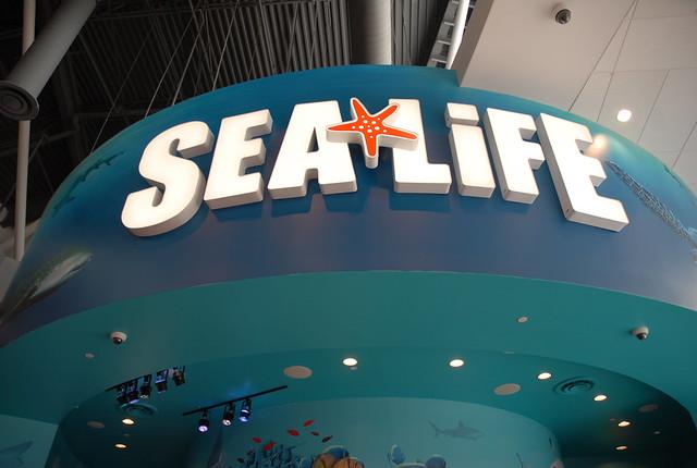 SEA LIFE Aquarium - Orlando, FL