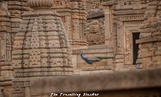 Bateshwar Temple (23) | by travelling slacker