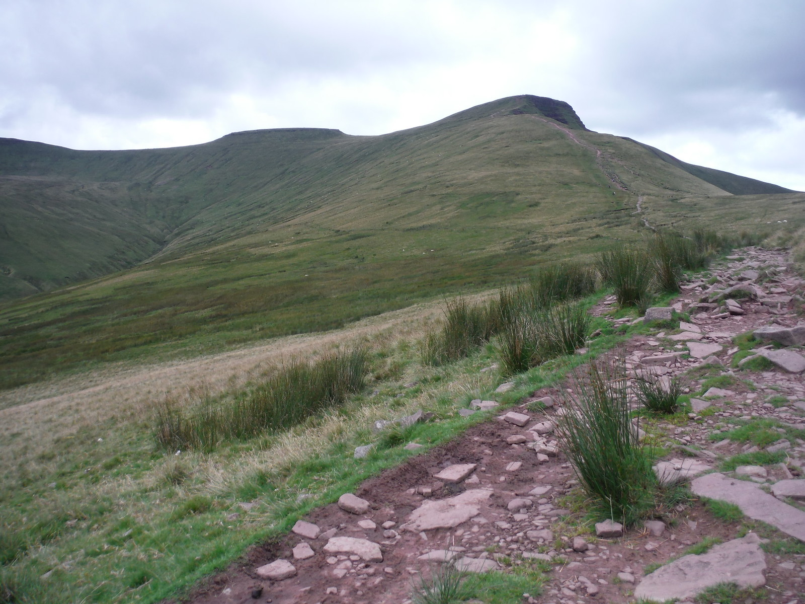 Corn du and Pen y Fan from saddle between Pen y Fan and Cribyn SWC Walk 278 Breacon Beacons Horseshoe - Bannau Brycheiniog