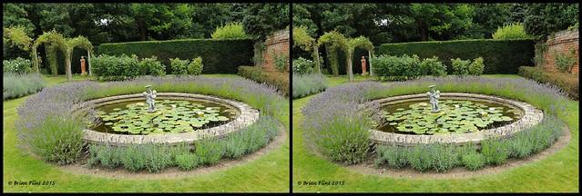 Beautiful garden - 3d cross-view