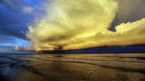 trees usa storm beach gulfofmexico water rain clouds sand gulf unitedstates florida thunderstorm fl stpetebeach stpetersburgbeach 2015