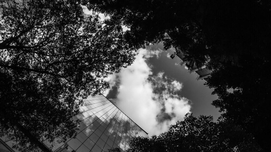 Vistazo a las nubes